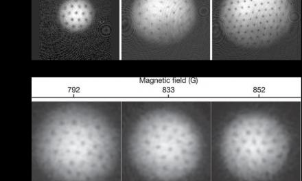 【專欄】超冷原子氣體中的小宇宙