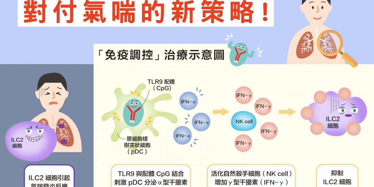 對付氣喘的新策略! 以「免疫調控微粒子」治療類固醇抗藥性氣喘