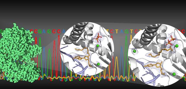 產學合作新突破! 臺灣蛋白質計畫與生技公司共創DNA定序新方法