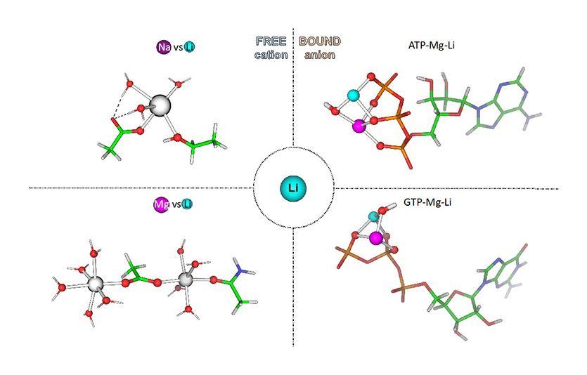 僅帶兩個電荷的鋰離子究竟如何預防自殺與躁鬱症呢?