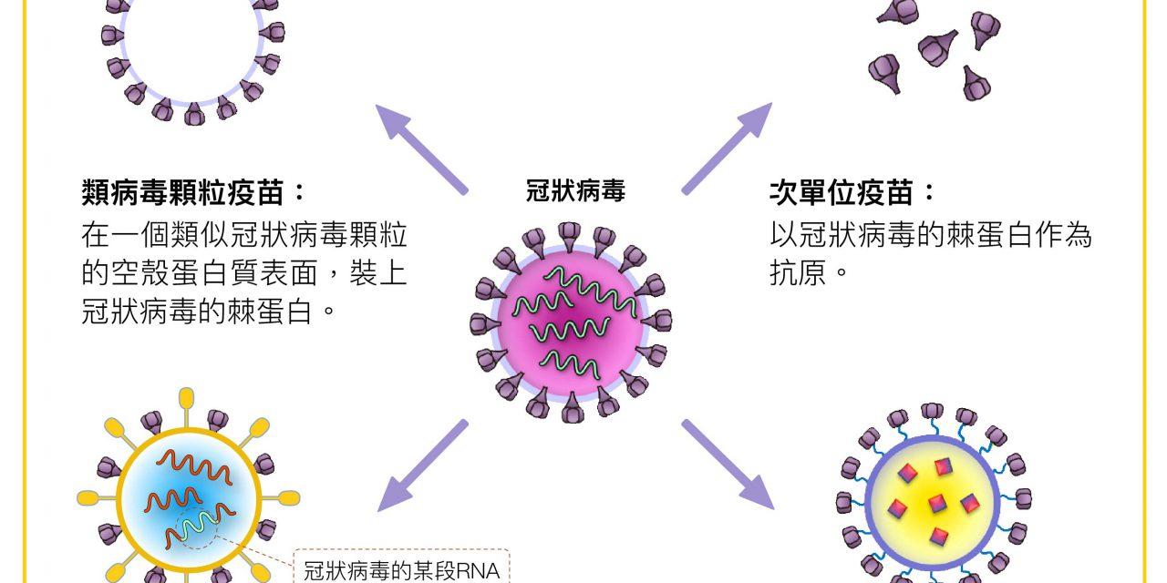 【中研抗疫1】四大疫苗平台分頭合擊,已製備候選疫苗,即將進入動物實驗