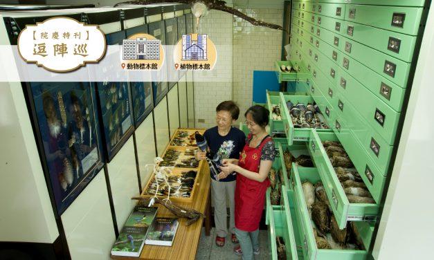 [專刊特稿] 寂靜的生物大觀園──生物多樣性研究博物館(動/植物標本館)
