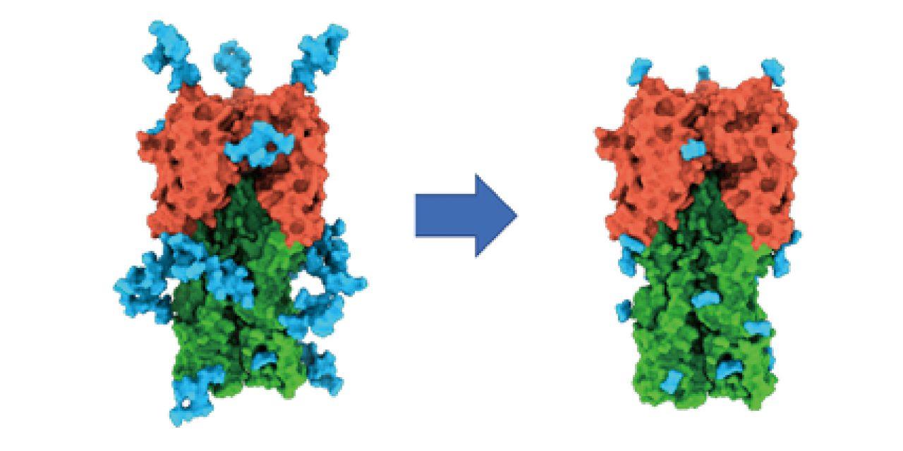 一打多效果更佳 中研院研發A型流感廣效疫苗