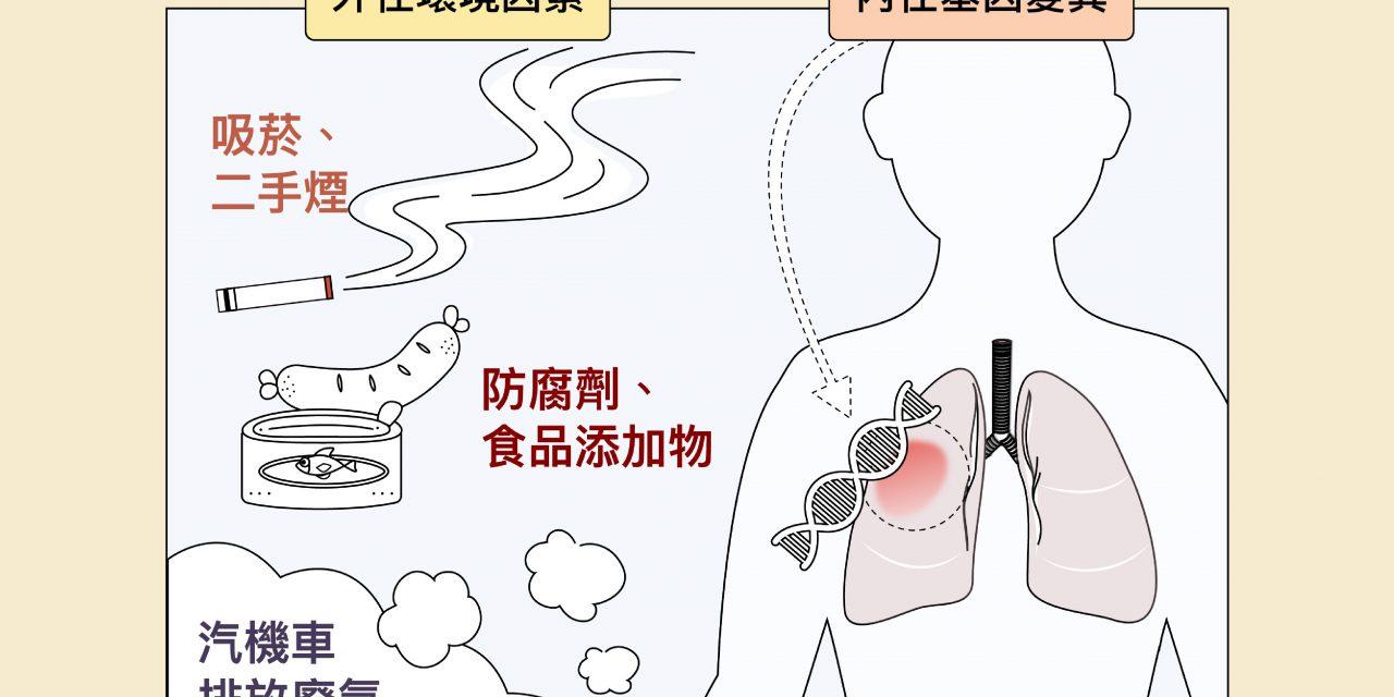 肺癌患者半數不曾吸菸?女生比男生容易罹癌?找到臺灣人肺癌關鍵成因